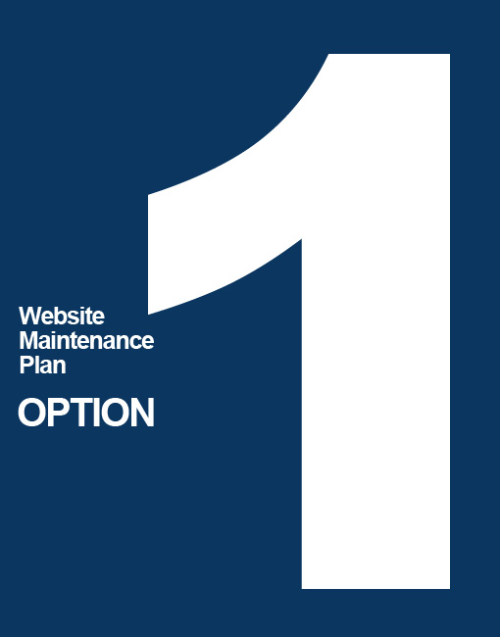 nmcorp-websitemaintenance-options-1