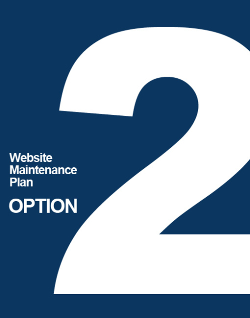 nmcorp-websitemaintenance-options-2